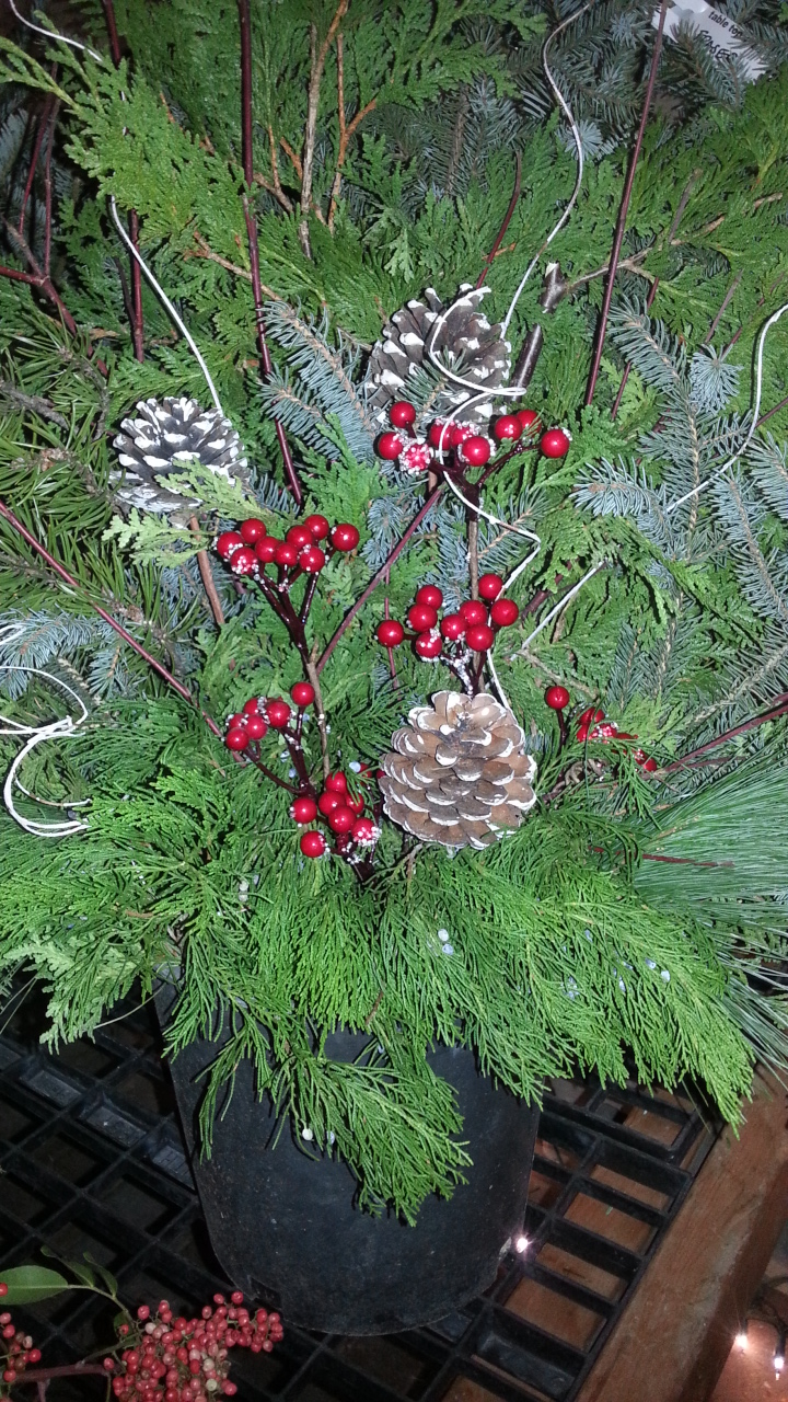 outdoor christmas container, fresh greens, christmas decor, winnipeg, jensen nursery