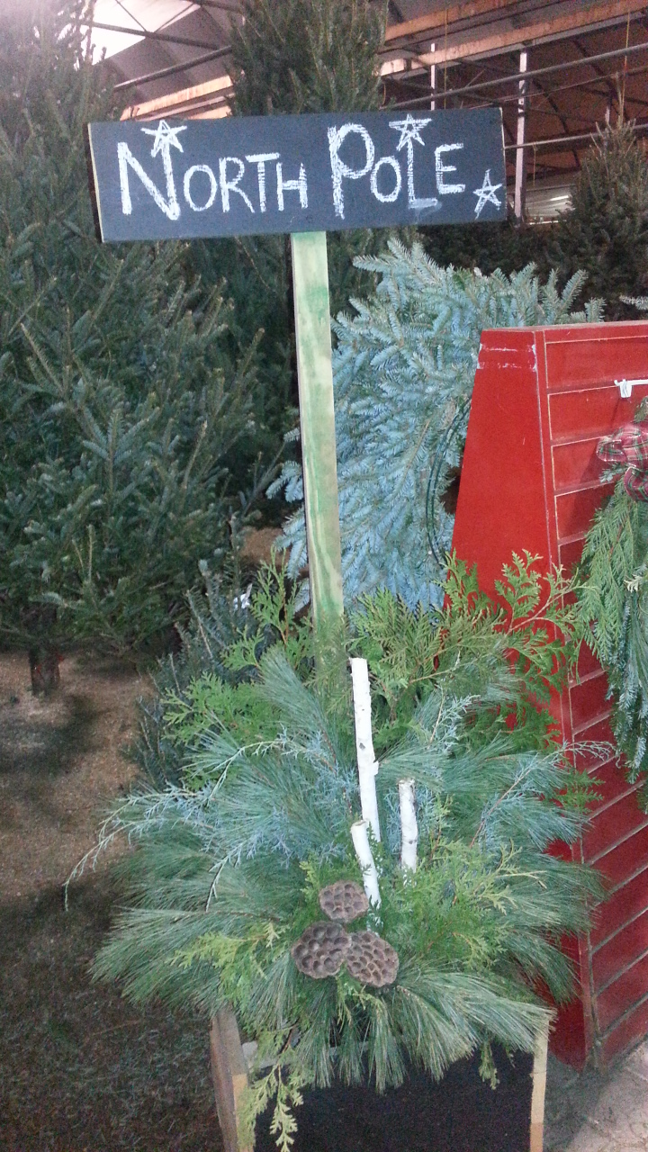 north pole, christmas shop, christmas tree shop, swags, wreaths, fresh greens, jensen nursery