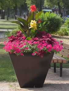 citadel desert planter by equinox, city of winnipeg planters, jensen nursery, equinox